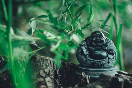 buddha-2705421_1920